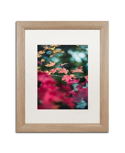 """Trademark Global Jason Shaffer 'Maple' Matted Framed Art - 16"""" x 20"""""""