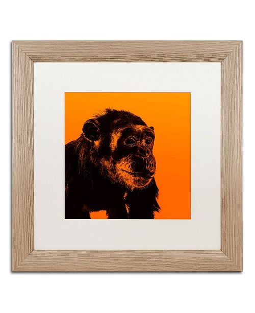 """Trademark Global Claire Doherty 'Chimp No 3' Matted Framed Art - 16"""" x 16"""""""