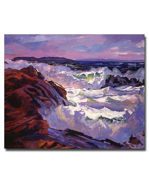 "Trademark Global David Lloyd Glover 'Palos Verdes Beach' Canvas Art - 47"" x 35"""