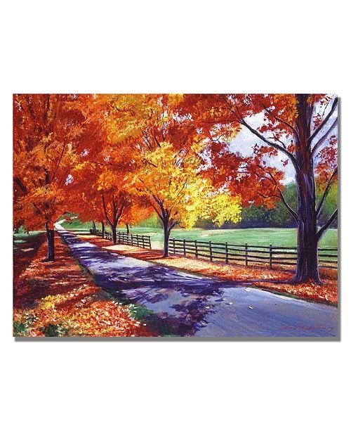 "Trademark Global David Lloyd Glover 'October Road' Canvas Art - 47"" x 35"""