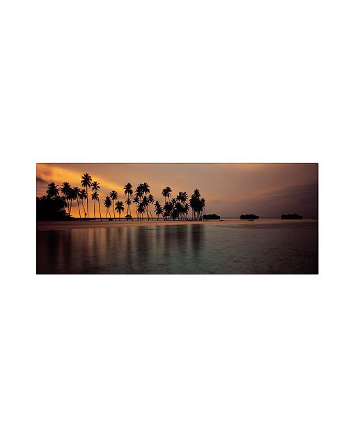 "Trademark Global David Evans 'Afterglow' Canvas Art - 47"" x 16"""