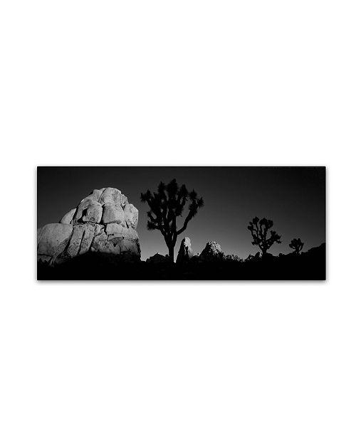 "Trademark Global David Evans 'First Light B&W-Joshua Tree NP' Canvas Art - 19"" x 6"""