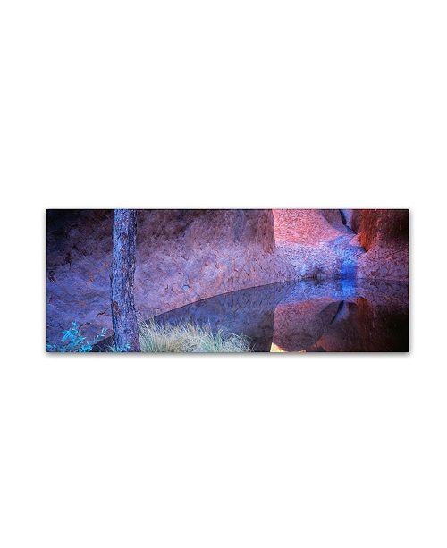"Trademark Global David Evans 'Mutitjulu Waterhole-Uluru' Canvas Art - 19"" x 6"""