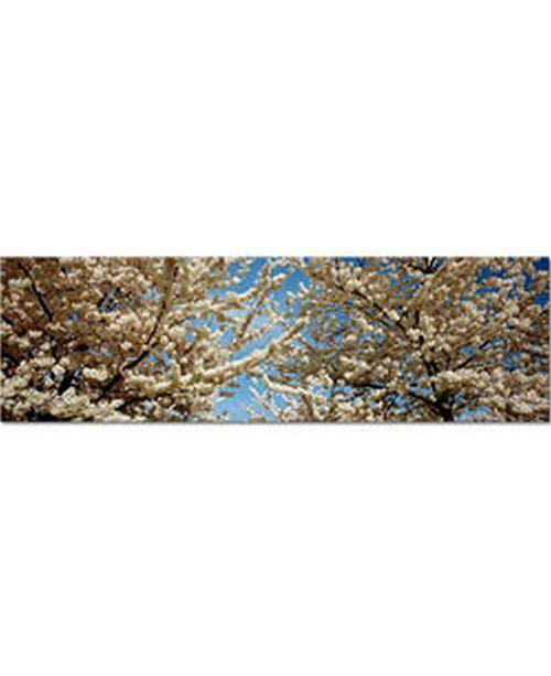 """Trademark Global Preston, 'Floral Escape' Canvas Art - 47"""" x 14"""""""