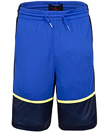 Little Boys Colorblocked Shorts