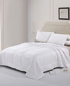 Cheer Collection Silk Blend Comforter - Full/Queen