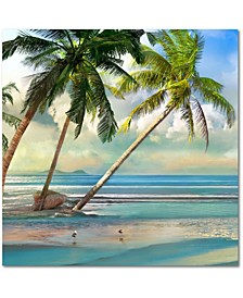 A Found Paradise III Gallery-Wrapped Canvas Wall Art Collection