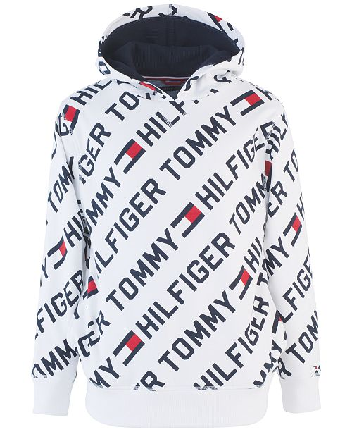 Kids sweatshirt ESSENTIAL LOGO LL HOODIE Tommy Hilfiger Kids