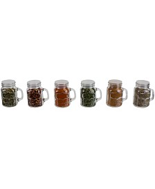 HDS Trading 6 Piece Glass Spice and Seasoning Jar Set with Clear Shaker Top and Handle