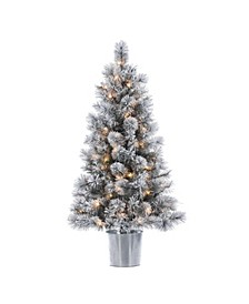 4.5-Foot High Flocked Pre-lit Mixed Needle Boise Pine in Silver Bucket