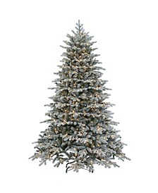 7.5Ft. Flocked Natural Cut Vermont Spruce with 900 clear lights