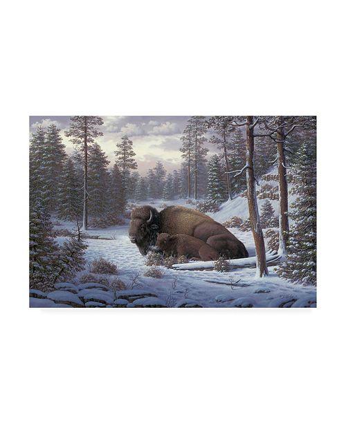 "Trademark Global R W Hedge The Guardian Buffalo Canvas Art - 27"" x 33.5"""