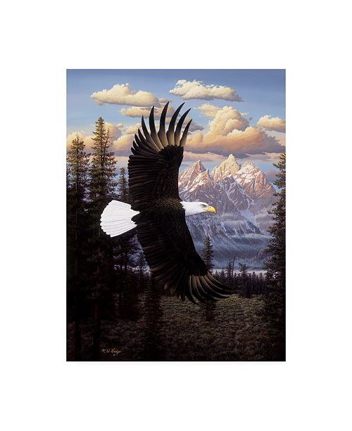 """Trademark Global R W Hedge Land of the Free Eagle Canvas Art - 15.5"""" x 21"""""""