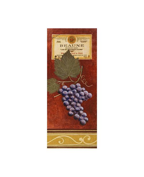 """Trademark Global Pablo Esteban Grapes with Label on Red Canvas Art - 27"""" x 33.5"""""""