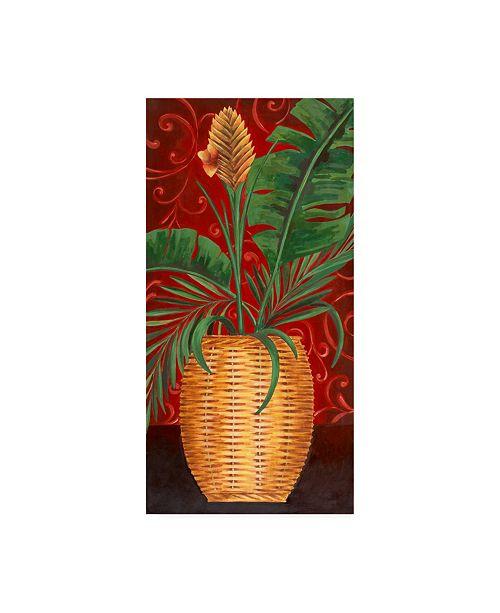 "Trademark Global Pablo Esteban Tropical Plant in Wicker Canvas Art - 36.5"" x 48"""