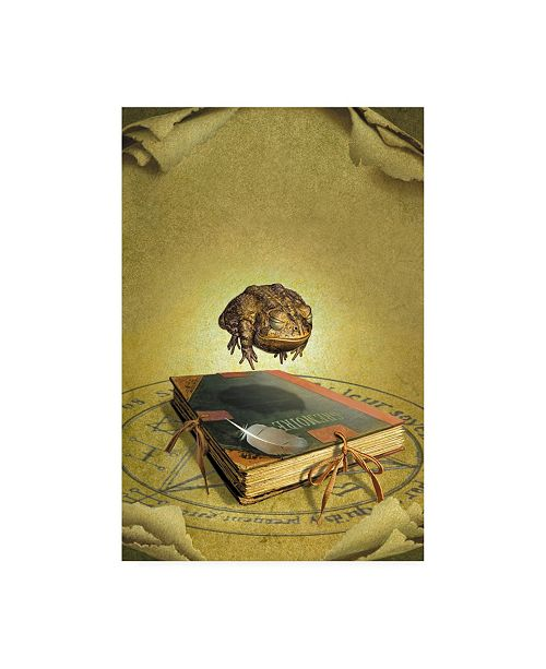 "Trademark Global Dan Craig Unexpected Magic Canvas Art - 19.5"" x 26"""
