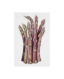 "Deborah Kopka Asparagus Muted Colors Canvas Art - 36.5"" x 48"""