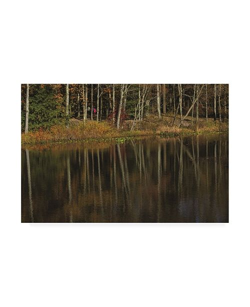 "Trademark Global Kurt Shaffer Photographs Autumn Lakeshore Reflections Canvas Art - 36.5"" x 48"""