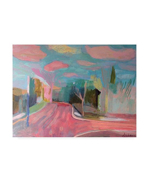 "Trademark Global Iria Fernandez Alvare Clouds Pink and Blue Canvas Art - 19.5"" x 26"""