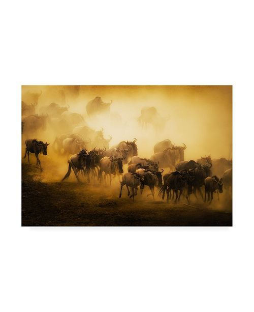 """Trademark Global Mohammed Alnaser To Migrate Canvas Art - 20"""" x 25"""""""