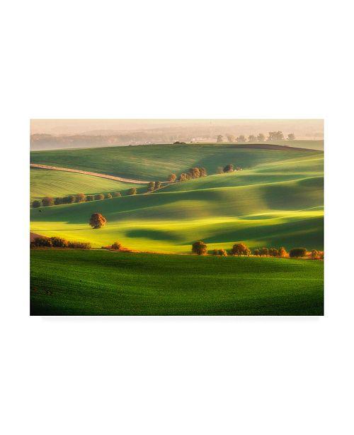 "Trademark Global Piotr Krol Bax Green Fields Canvas Art - 37"" x 49"""