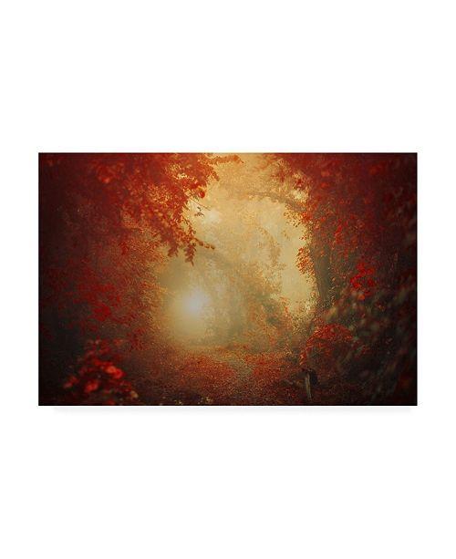 """Trademark Global Ildiko Neer Personal Journey Canvas Art - 15"""" x 20"""""""
