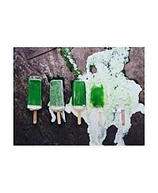 """Aleksandrova Karina Ten Minutes Canvas Art - 37"""" x 49"""""""
