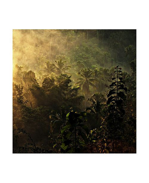 "Trademark Global Johanes Januar The Atmosphere of The Morning Canvas Art - 27"" x 33"""