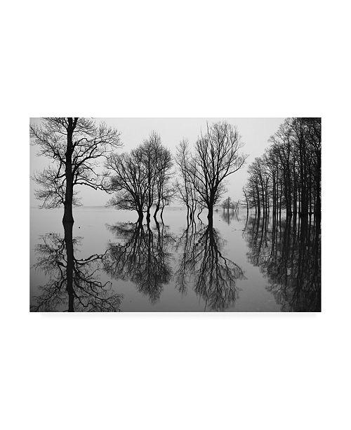 "Trademark Global Simun Ascic Flood Catastrophe Canvas Art - 20"" x 25"""