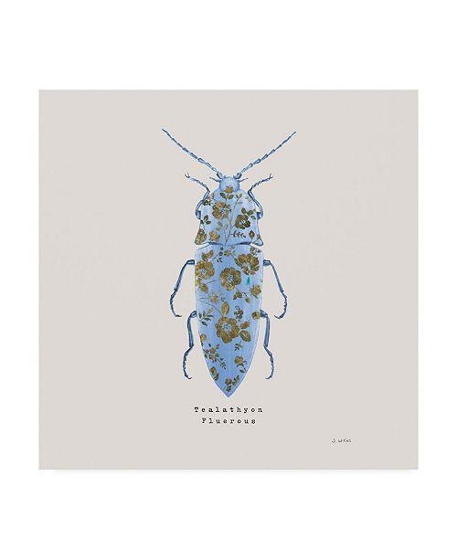 "Trademark Global James Wiens Adorning Coleoptera VIII Sq Blue Canvas Art - 20"" x 25"""