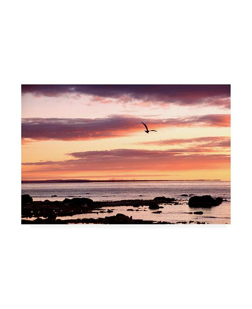 "Trademark Global Monte Nagler Flying at Sunrise Sault St. Marie Michigan Color Canvas Art - 20"" x 25"""