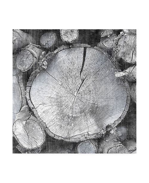 "Trademark Global John Butler Logging Light VI Canvas Art - 27"" x 33"""