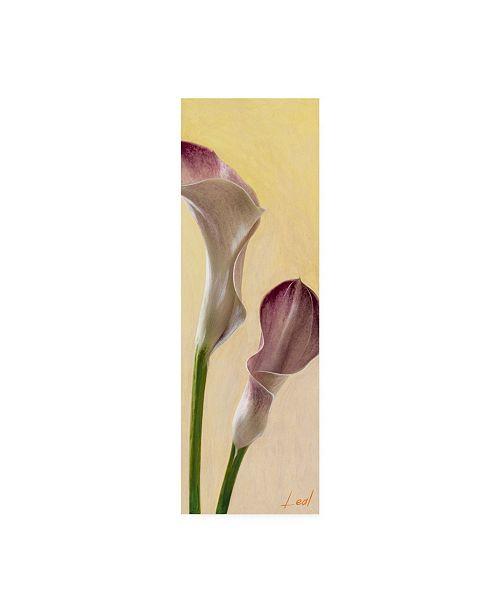 "Trademark Global Pablo Esteban Pink Floral Bell 1 Canvas Art - 15.5"" x 21"""