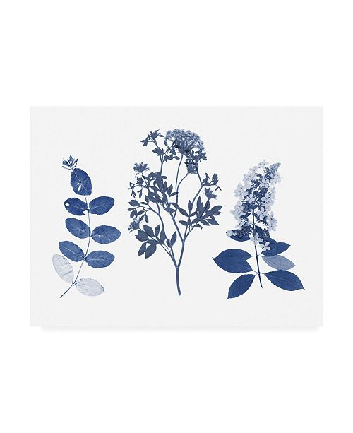 "Trademark Global Studio W Indigo Pressed Florals I Canvas Art - 19.5"" x 26"""