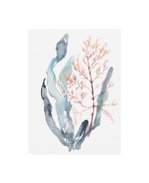 "Jennifer Goldberger Sweet Seaweed Ii Canvas Art - 36.5"" x 48"""