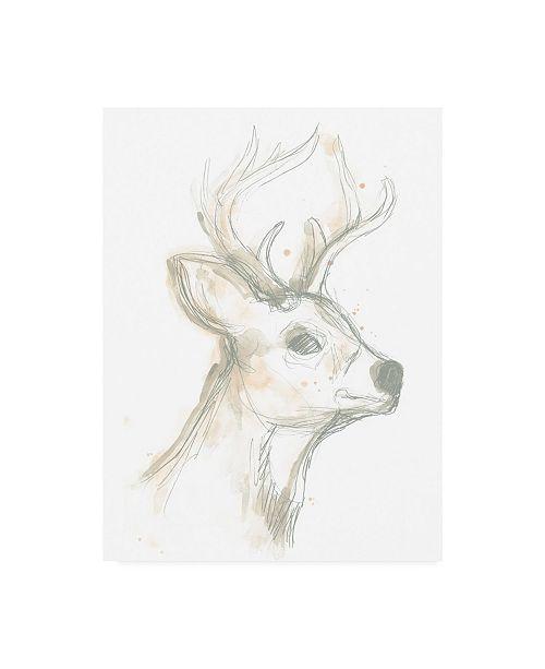 "Trademark Global June Erica Vess Deer Cameo IV Canvas Art - 36.5"" x 48"""