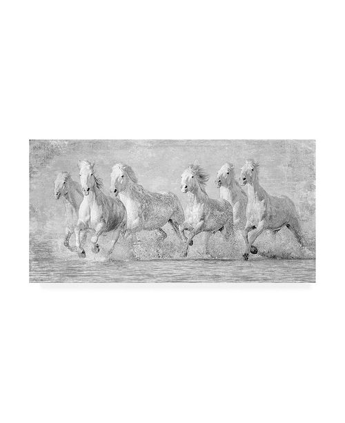 "Trademark Global PH Burchett Water Horses V Canvas Art - 27"" x 33.5"""