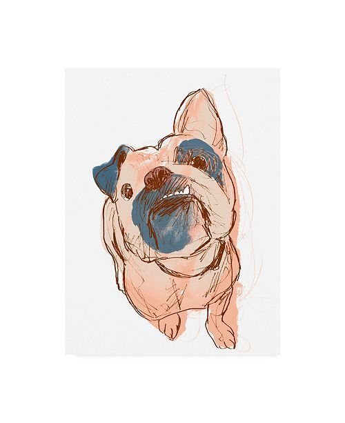 "Trademark Global June Erica Vess Dog Portrait Bobo Canvas Art - 36.5"" x 48"""