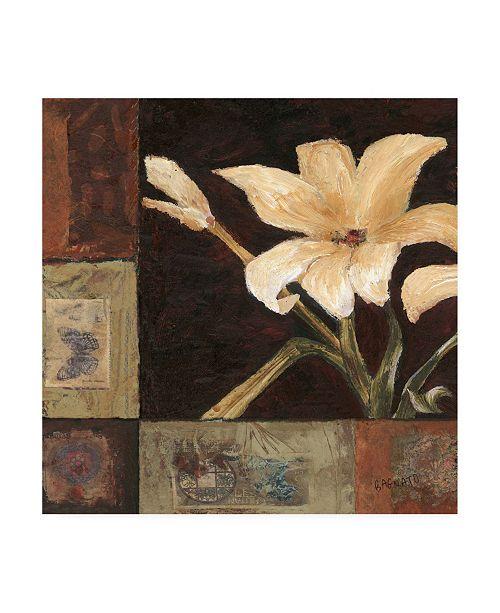 """Trademark Global Judi Bagnato Magnolia Breeze I Canvas Art - 15.5"""" x 21"""""""