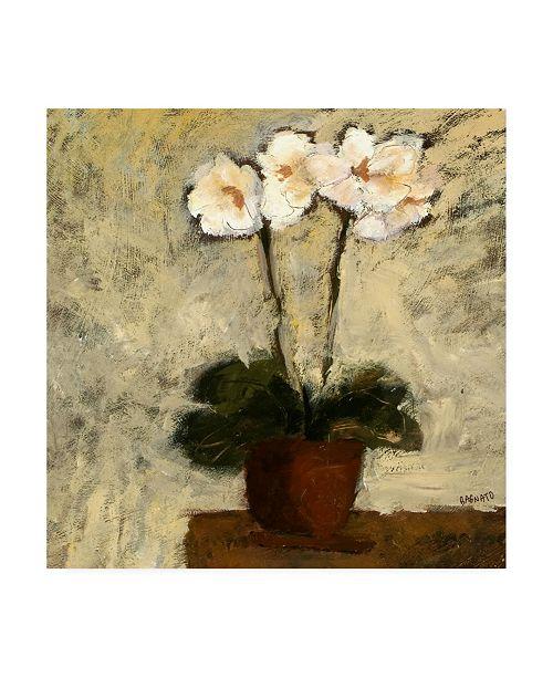 """Trademark Global Judi Bagnato Orchid Textures I Canvas Art - 15.5"""" x 21"""""""