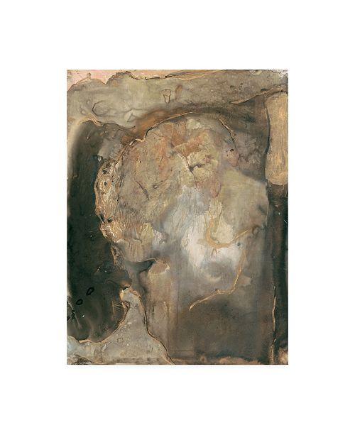 """Trademark Global Joyce Combs Ancient Rock II Canvas Art - 36.5"""" x 48"""""""