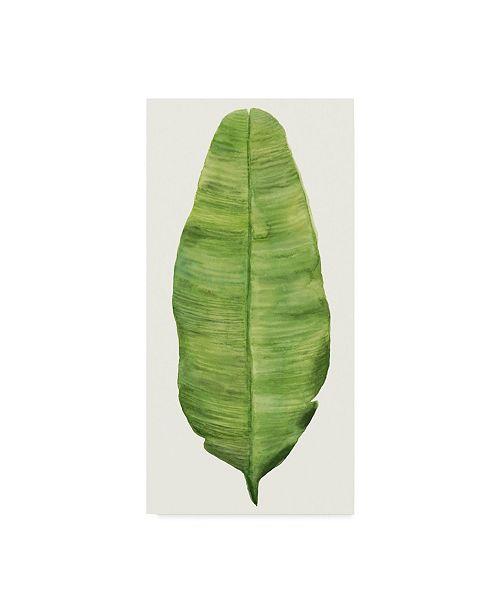 "Trademark Global Naomi Mccavitt Tropical Breeze Leaves IV Canvas Art - 15"" x 20"""