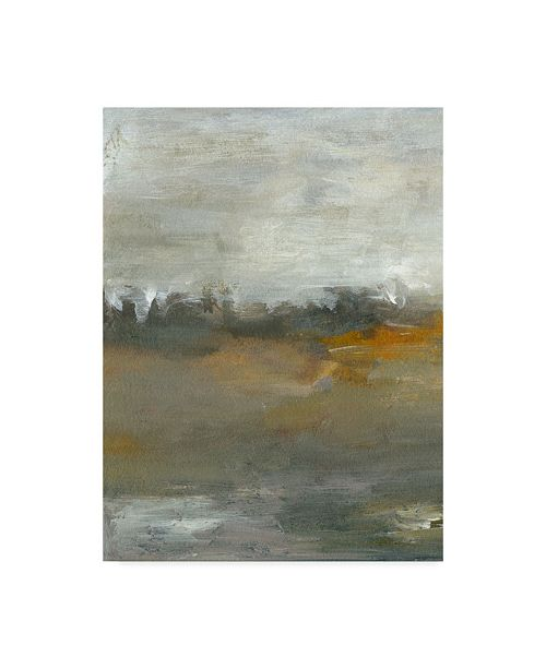 "Trademark Global Sharon Gordon Early Mist I Canvas Art - 20"" x 25"""
