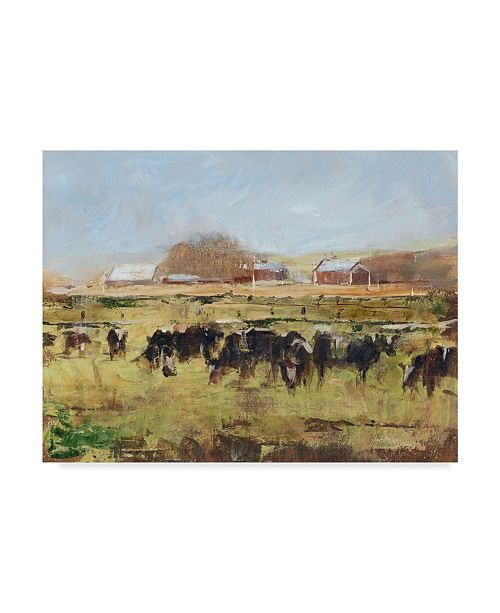"""Trademark Global Ethan Harper Out to Pasture II Canvas Art - 20"""" x 25"""""""