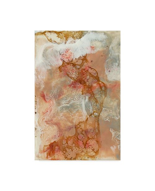 "Trademark Global Jennifer Goldberger Coral Lace I Canvas Art - 15"" x 20"""