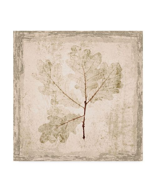 "Trademark Global Irena Orlov Stone Leaf III Canvas Art - 20"" x 25"""