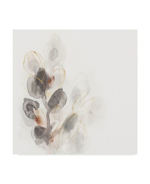 "Trademark Global June Erica Vess Seed Pod I Canvas Art - 27"" x 33"""