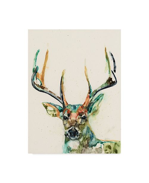 "Trademark Global Jennifer Goldberger Hi Fi Wildlife II Canvas Art - 20"" x 25"""