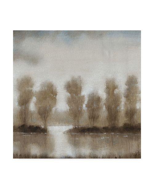"Trademark Global Tim Otoole Subtle Reflection I Canvas Art - 15"" x 20"""