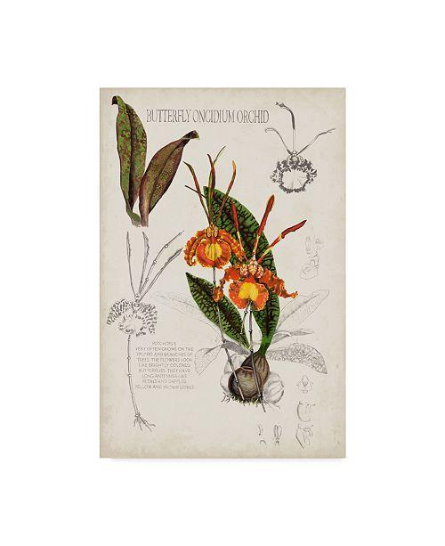 """Trademark Global Naomi Mccavitt Orchid Field Notes IV Canvas Art - 15"""" x 20"""""""